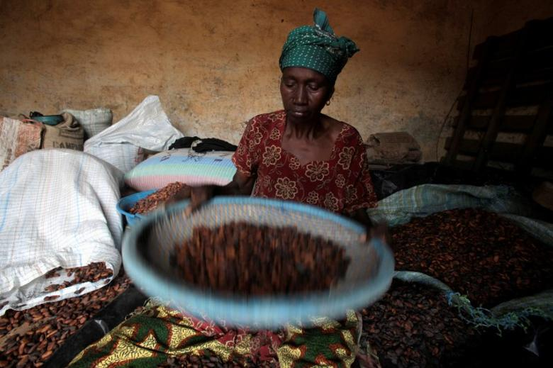 FILE PHOTO:  A woman winnows cocoa beans in Sankadiokrou, Ivory Coast, November 21, 2011.     REUTERS/Thierry Gouegnon/File Photo