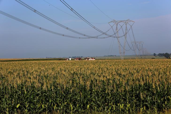 FILE PHOTO: Electricity pylons of South Africa power utility Eskom are seen above a maize field in Mpumalanga province , north of Johannesburg, in this picture taken March 1,2016. REUTERS/Siphiwe Sibeko