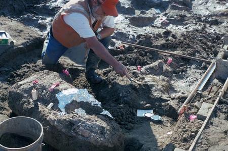 حفريات وأدوات حجرية قد تعيد كتابة تاريخ وجود الإنسان في الأمريكتين