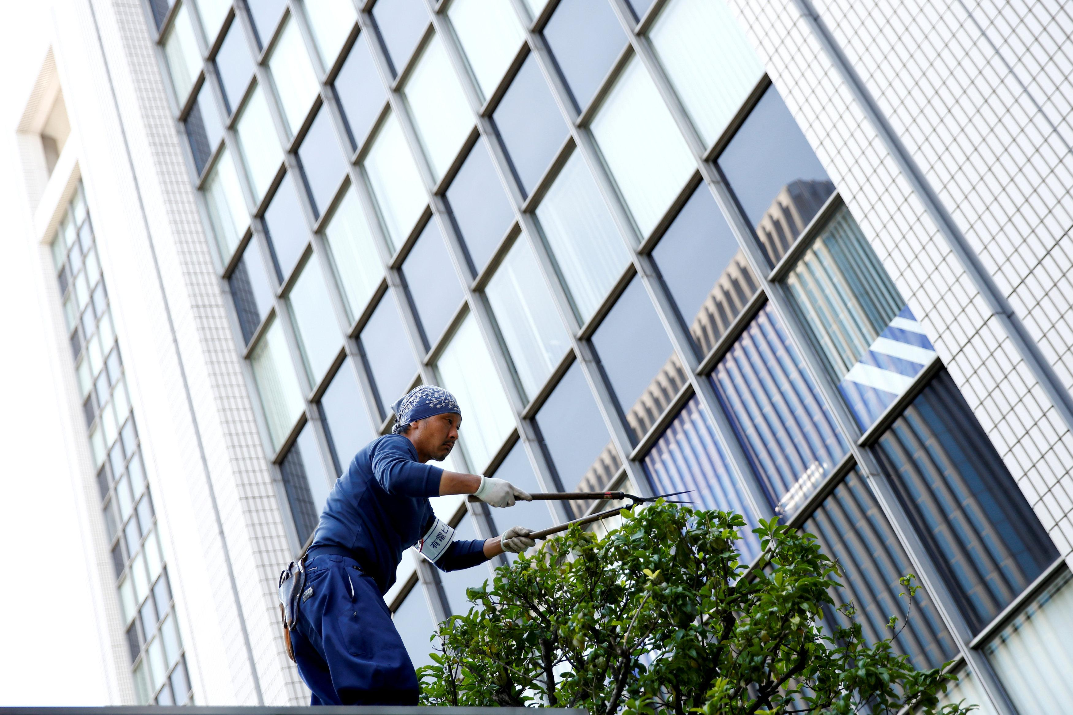 A worker cuts a tree in front of an office building at a business district in Tokyo, Japan, May 18, 2016. Thomas Peter