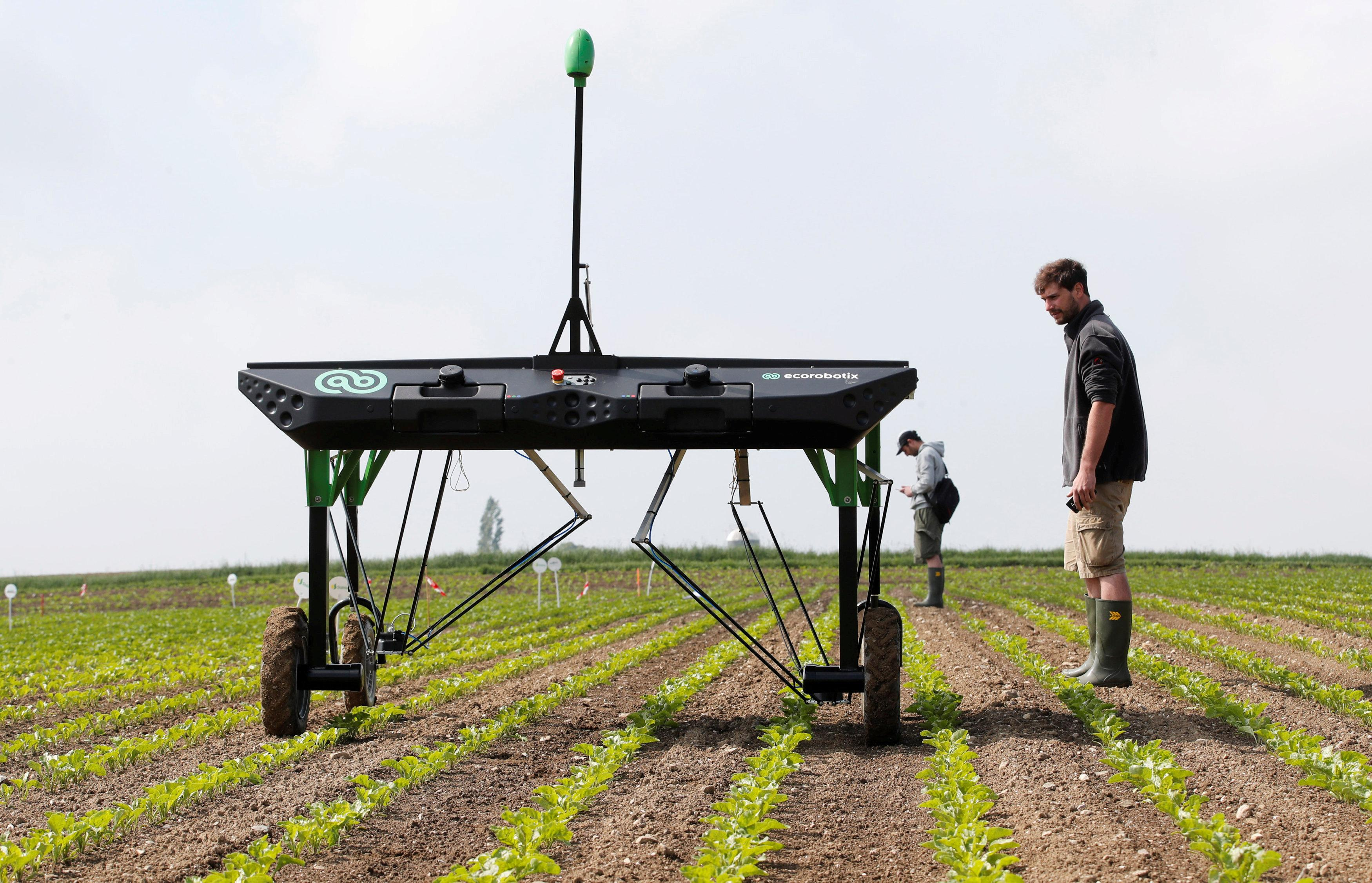 The prototype of an autonomous weeding machine by Swiss start-up ecoRobotix is pictured during tests on a sugar beet field near Bavois, Switzerland May 18, 2018. Denis Balibouse