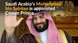Saudi Arabia's King Salman elevates son to Crown Prince