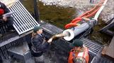 秒速7.6メートルでダムを越えていけ!米で「鮭バズーカ」開発(字幕・30日)