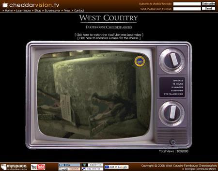 A screen grab of CheddarVision.tv. A large English cheddar cheese has become a star of the Internet, attracting more than 1 million viewers to sit and stare at it as it slowly ripens. REUTERS/www.cheddarvision.tv