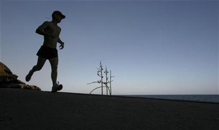 A jogger runs past a work titled 'red box bush' by Australian artist Zoe Amor at Sydney's Mark's Park November 1, 2006. Regular exercise may work as well as medication in improving symptoms of major depression, researchers have found. REUTERS/Tim Wimborne