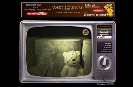 A screenshot of CheddarVision.tv, taken on November 12, 2007. Wedginald, the English cheddar cheese that has become a star of the Internet as it matures live on screen, is up for auction with the proceeds going to charity. REUTERS/www.cheddarvision.tv