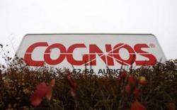 <p>L'éditeur canadien de logiciels Cognos, en cours de rachat par IBM pour cinq milliards de dollars, a quasi doublé son bénéfice net au troisième trimestre. /Photo prise le 12 novembre 2007/REUTERS/Chris Wattie</p>