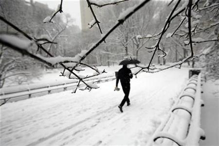 A man makes his way through the snow in Central Park in New York, February 22, 2008. Landmark Communications is seeking up to $5 billion for the Weather Channel cable network, with preliminary bids due next week, according to multiple sources familiar with the matter. REUTERS/Keith Bedford (UNITED STATES)