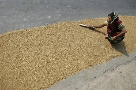 Indian rice export ban to hit Bangladesh imports - traders