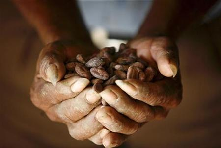 A farmer shows cocoa beans at his farm outside Punta Gorda, Belize, May 31, 2007. British researchers recruiting volunteers willing to eat a bar of chocolate daily for a year, guilt-free and all in the name of science. The trial starting in June will explore whether compounds called flavonoids found in chocolate and other foods can reduce the risk of heart disease for menopausal women with type 2 diabetes, the researchers said on Monday. REUTERS/Daniel LeClair