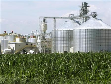 An ethanol plant with its giant corn silos is seen next to a cornfield in Colorado, July 7, 2006. Agriculture Secretary Ed Schafer said ethanol is not having a ''major'' impact on food prices, and downplayed calls by lawmakers and industry groups to make changes to programs that promote increased use of biofuels. REUTERS/Rick Wilking