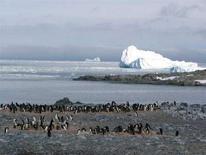 <p>Il paesaggio in Antartide REUTERS/Heidi Geisz/Virginia Institute of Marine Science/Handout</p>