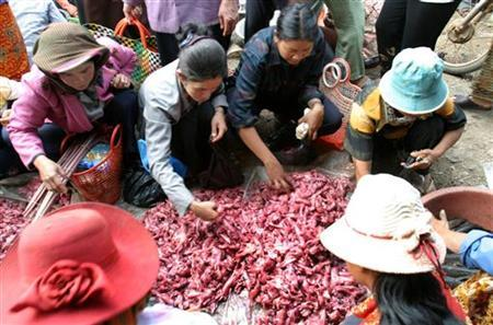 Cambodian shoppers search through rodent meat at a market northwest of Phnom Penh in a file photo. REUTERS/Chor Sokunthea