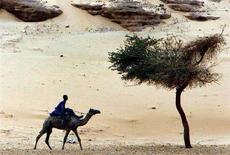 <p>Нубийский мальчик едет верхом на верблюде по берегу реки Нил в Асуане 25 марта 2007 года. Группа из 10-15 иностранных туристов была похищена неизвестными во время поездки в город Асуан на юге Египта, сообщили в понедельник источники в правоохранительных органах страны. REUTERS/Goran Tomasevic</p>