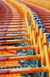 <p>Commercio, in Italia non decolla la spesa al supermarket online. REUTERS/Alessia Pierdomenico/Files</p>