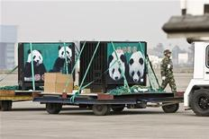 <p>Le gabbie dei due panda donati a Taiwan dalla Cina vengono caricati su un camion per raggiungere lo zoo. REUTERS/Nir Elias (CHINA)</p>