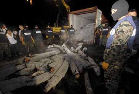 6月16日、メキシコ海軍が冷凍サメの体内から計1トン以上のコカインを押収したことが明らかに(2009年 ロイター/Argely Salazar)