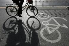 <p>A cyclist rides along a bicycle lane in Beijing November 19, 2007. REUTERS/Claro Cortes IV</p>