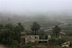<p>The remains of an old colonial house is seen during a foggy morning in the hills above Dellys August 16, 2009. REUTERS/Zohra Bensemra</p>