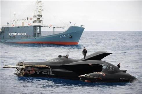 High seas clash over whaling