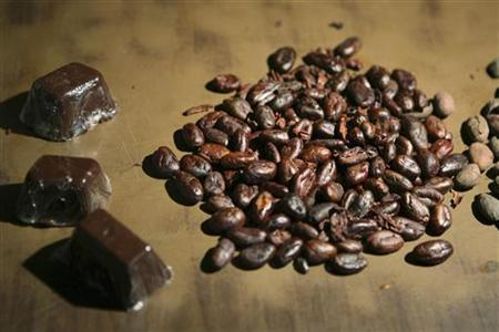 Pieces of chocolate and roasted cocoa beans are displayed in a farm near Puerto Cabello, about 180 km (115 miles) west of Caracas, May 15, 2008. REUTERS/Susana Gonzalez