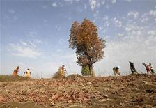 <p>Labourers dig a drain in a dry field at Mankapally in Adilabad district of the southern Indian state of Andhra Pradesh April 21, 2010. World Earth Day is observed on Thursday. Picture taken April 21, 2010. REUTERS/Krishnendu Halder</p>