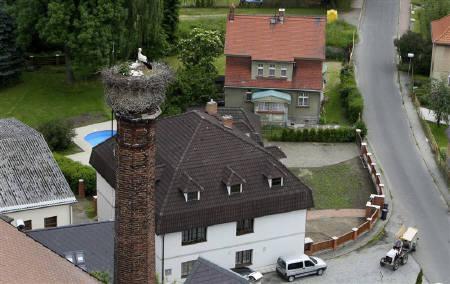 6月15日、チェコ最古とみられるコウノトリの巣は、150年近く経った今も「現役」(2010年 ロイター/Petr Josek)