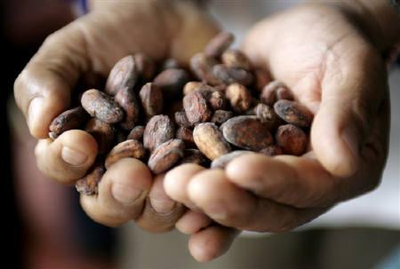 Peruvian cocoa farmer shows grains of cacao in the jungle town of Lamas in Tarapoto, March 6, 2009. European buyers say cocoa producers in Peru could successfully follow in the footsteps of the country's coffee growers, who have turned the Andean country into the world's largest exporter of organic coffee beans. REUTERS/Mariana Bazo/Files