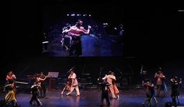 <p>Couples compete during the final round of the salon tango category in Argentina's eighth edition of the Tango Dance World Championship in Buenos Aires, August 30, 2010. REUTERS/Marcos Brindicci</p>