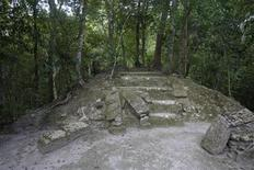 <p>A partially uncovered Maya temple is seen at the el Mirador archaeological site in the Peten jungle, Guatemala August 25, 2009. REUTERS/Daniel LeClair</p>