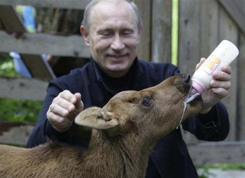 Putin's softer side