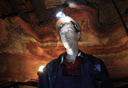 A miner stands near the cutting face of a potassium mine near the city of Berezniki in the Perm region close to Russia's Ural mountains March 16, 2011. Picture taken March 16, 2011. REUTERS/Sergei Karpukhin