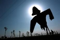 <p>A Chinese farmer walks near a scarecrow at a village in central Shanxi province in this picture taken September 21, 2004. REUTERS/China Photos</p>