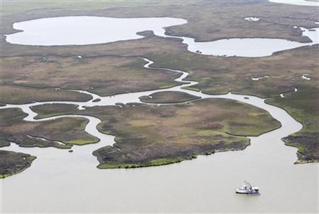 A shrimp boat trawls near healthy marsh, bayous and water ways east of the mouth of the Atchafalaya River near Morgan City, Louisiana April 20, 2011.  REUTERS/Sean Gardner