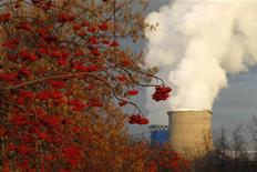 Ветви рябины на фоне труб тепловой электростанции в Москве, 2 декабря 2010 года. Удлиненные праздничные выходные в Москве выдадутся холодными - температура воздуха опустится ниже нуля, ожидают синоптики. REUTERS/Mikhail Voskresensky