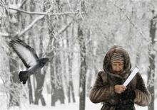Женщина проходит под заснеженными деревьями в Москве, 29 декабря 2010 года. Рабочая неделя в Москве будет морозной и снежной с заметным похолоданием к выходным, ожидают синоптики. REUTERS/Denis Sinyakov