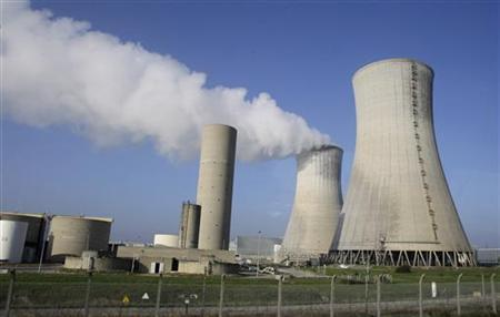 1月11日、原子力発電所の近くに住むフランスの子どもたちは、白血病の発病率が通常の2倍であることが、同国の専門家の調査結果で明らかとなった。写真は昨年11月の代表撮影(2012年 ロイター)