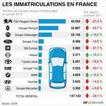 <p>LES IMMATRICULATIONS EN FRANCE</p>