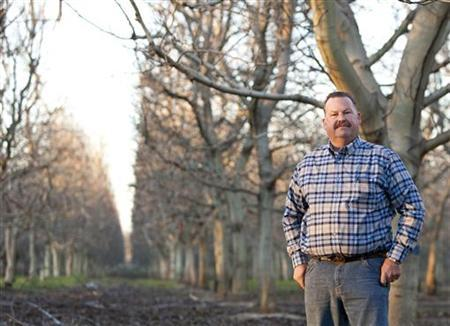 Walnut grower Matt Conant stands in his walnut grove in Rio Oso, California February 23, 2012. ''There's a lot of uncertainty right now,'' says Conant, a walnut grower, former supplier to Diamond Foods and district director of the California Farm Bureau Federation. An accounting scandal over the payments made by the largest U.S. walnut processor Diamond Foods Inc to its growers has hurt their confidence in the company. Picture taken February 23, 2012. REUTERS/Robert Durell (UNITED STATES - Tags: AGRICULTURE BUSINESS)