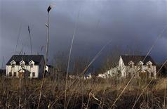 A view of Lake View, an empty and unsold housing development, in the village of Keshcarrigan, County Leitrim in this January 28, 2012 file photo. REUTERS/Cathal McNaughton