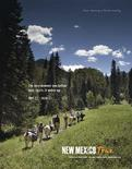 Undated handout image courtesy of the New Mexico Tourism Department shows a tourism campaign advertisement of a llama trek. REUTERS/New Mexico Tourism Department/Handout