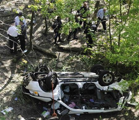 Van plunges into NY's Bronx Zoo, killing seven - Reuters