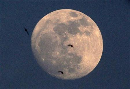 Birds fly in front of the moon at sunset in Bucharest May 4, 2012. REUTERS/Radu Sigheti