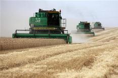 Комбайны собирают урожай пшеницы на поле под Ставрополем, 21 июля 2011 года. Экспорт российского зерна может сократиться на 28 процентов в наступающем сезоне из-за засушливой погоды на юге РФ и резкого падения запасов зерна, прогнозируют аналитики центра СовЭкон. REUTERS/Eduard Korniyenko