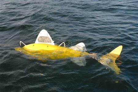 The SHOAL robotic fish, a state-of-the-art pollution monitoring system, is seen in this undated handout photo. REUTERS/SHOAL Consortium/Handout
