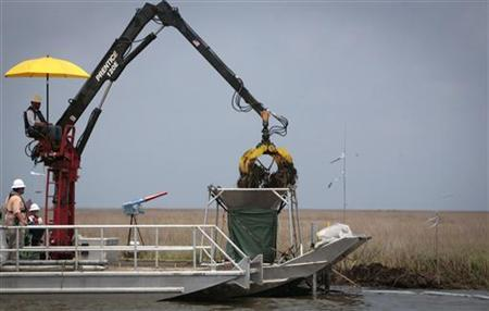 Workers remove oil soaked grass from a marshland, one year after the BP Oil Spill, in Bay Jimmy near Myrtle Grove, Louisiana in this April 20, 2011 file photo. REUTERS/Lee Celano/Files