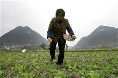 Фермер разбрасывает удобрения на поле в городе Гуйян в китайской провинции Гуйчжоу, 14 февраля 2007 года. Российский агрохимический холдинг Акрон, не получивший контроль над польским химическим гигантом Azoty Tarnow, но сумевший скупить 13,2 процента польской компании, на сегодняшний день доволен размером своего пакета и не планирует его увеличивать, сказал журналистам бизнесмен Вячеслав Кантор, контролирующий Акрон. REUTERS/Jason Lee