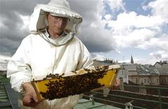 """Felix Munk, head of the beekeeper organization Stadtimker, holds a honeycomb with bees at the rooftop of the Austrian chancellery in Vienna July 16, 2012. Munk is a member of Vienna's Stadtimker, one of a growing number of urban beekeepers' associations who are trying to encourage bees to make their homes in cities, as pesticides and crop monocultures make the countryside increasingly hostile. Bee populations are in sharp decline around the world, under attack from a poorly understood phenomonenon known as colony collapse disorder, whose main causes are believed to include a virus spread by mites that feed on haemolymph - bees' """"blood"""". Picture taken July 16, 2012. REUTERS/Lisi Niesner"""