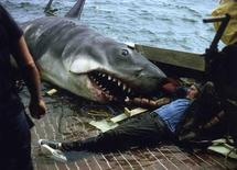 "Actor Robert Shaw and the mechanical shark nicknamed Bruce are seen in Martha's Vineyard, Massachusetts in this 1974 handout photo courtesy of Jim Beller. In a few weeks, thousands more visitors will arrive for ""Jawsfest,"" a four-day tribute to the film that cemented the fame of Martha's Vineyard, off the coast of Massachusetts, as the story's fictional Amity Island. REUTERS/Handout photo of Jim Beller"
