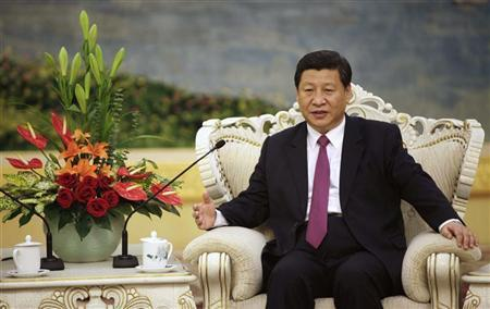 Xi Jinping speaks with Egypt's President Mohamed Mursi (not pictured) during a meeting at the Great Hall of the People, in Beijing August 29, 2012. REUTERS/How Hwee Young/Pool